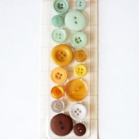 Botones Schol (16Unds)