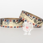 Washi Tape Air Mail