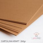 Cartulina Kraft 260gr.