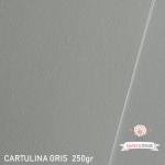 Cartulina Gris Perla 185gr.