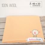 Fieltro 100% Lana Carne (40x33cm)